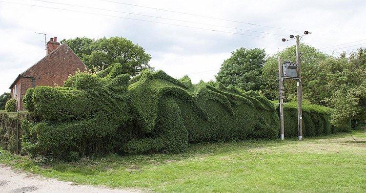 dragon-esculpido-jardin3