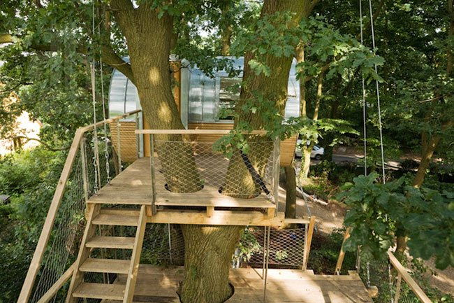 cabana-arbol-minimalista4