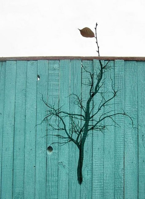 arte-urbano-naturaleza23