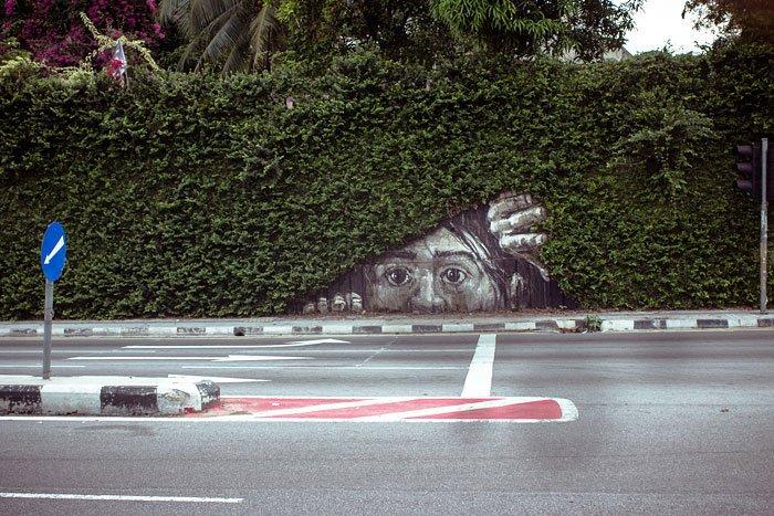 arte-urbano-naturaleza24