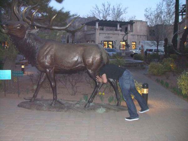 fotos-graciosas-con-estatuas17