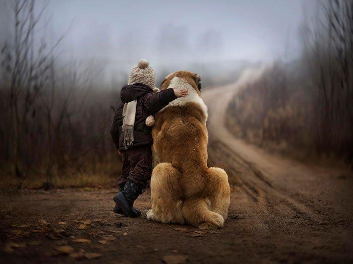 perros-grandes-bebes15