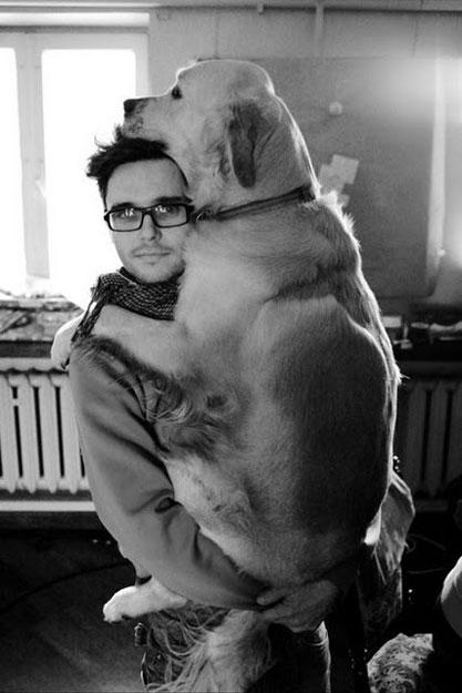 perros-grandes8