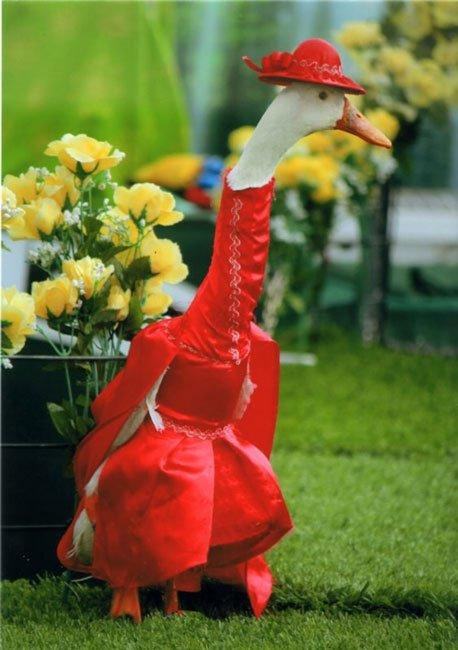 patos-elegantes7