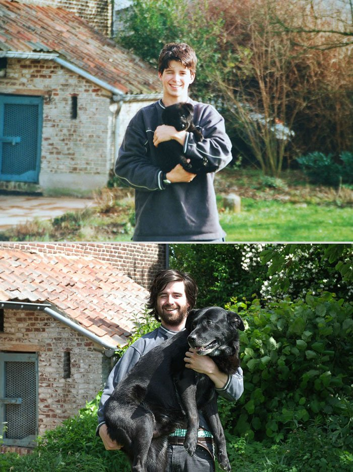 antes-despues-animales2