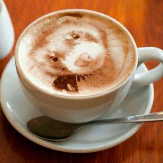 arte-latte9