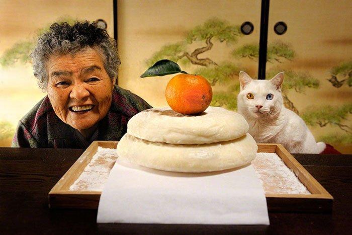 historia-abuela-gato1
