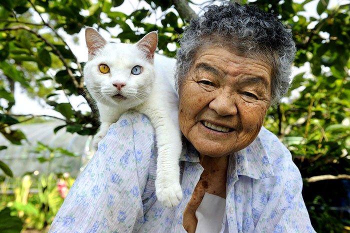 historia-abuela-gato18