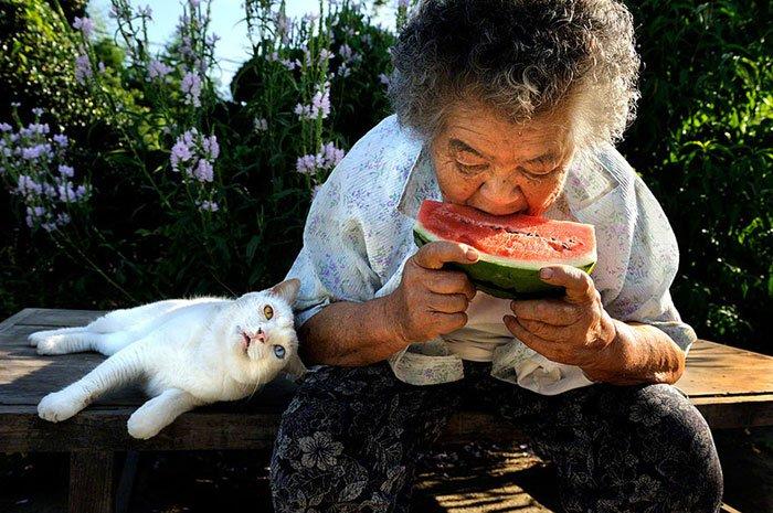 historia-abuela-gato3
