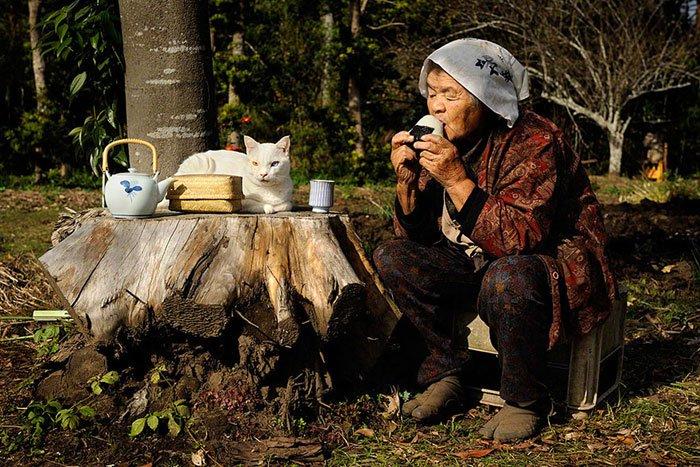 historia-abuela-gato5