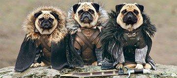 Los Carlino de Poniente: Tres Carlino recrean Juego de Tronos
