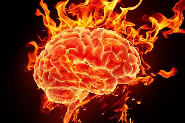 efectos-cerebro10