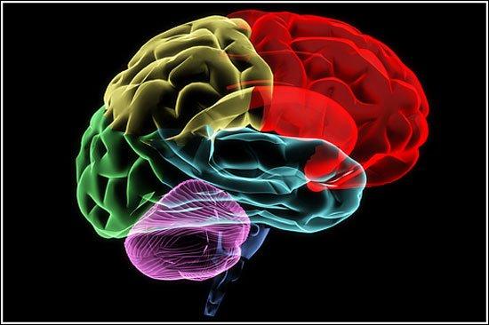 efectos-cerebro2