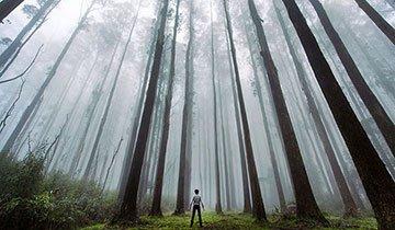 Humanos diminutos ante la inmensidad de la naturaleza. Espectacular