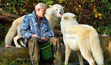 Pensé: Vivir con lobos puede ser guay. Cuando vi la última foto ¡Guau!