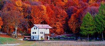 24 Hermosos lugares donde disfrutar de los intensos colores del otoño
