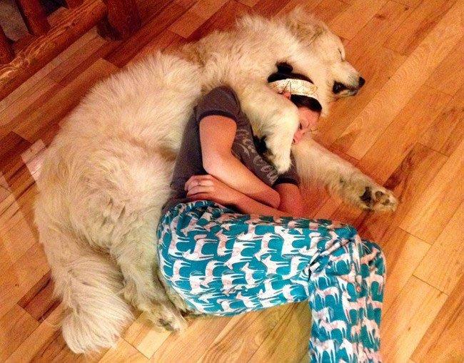 perros-espacio-personal23