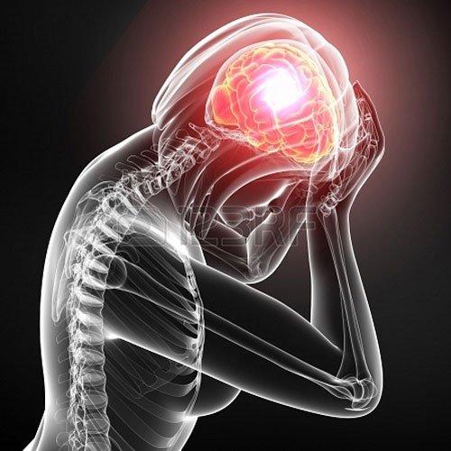 cerebro-vida-interesante2