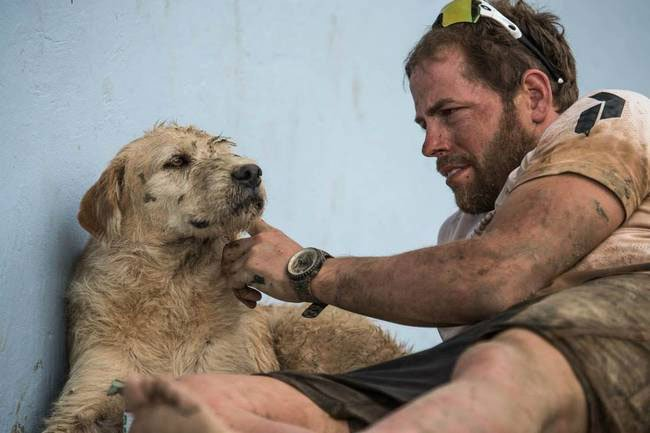 perro-abandono-amazonas6