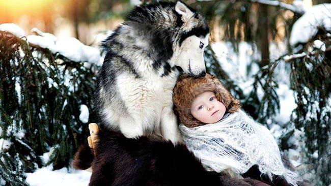 perro-cuidando-bebe13