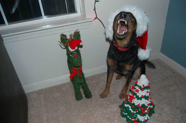 animal-vs-deco-navidad10