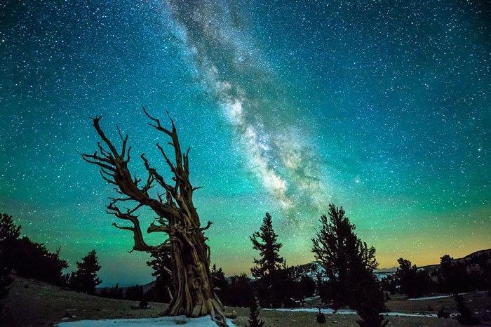 cielo-nocturno12
