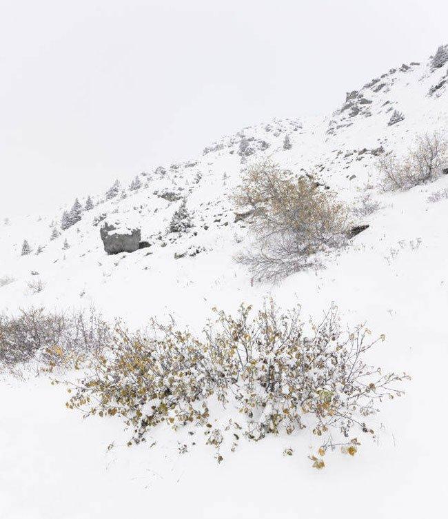 roca-casa-alpes8