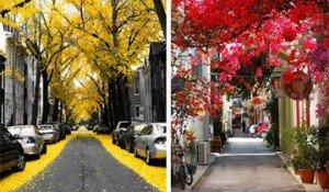 calles mágicas
