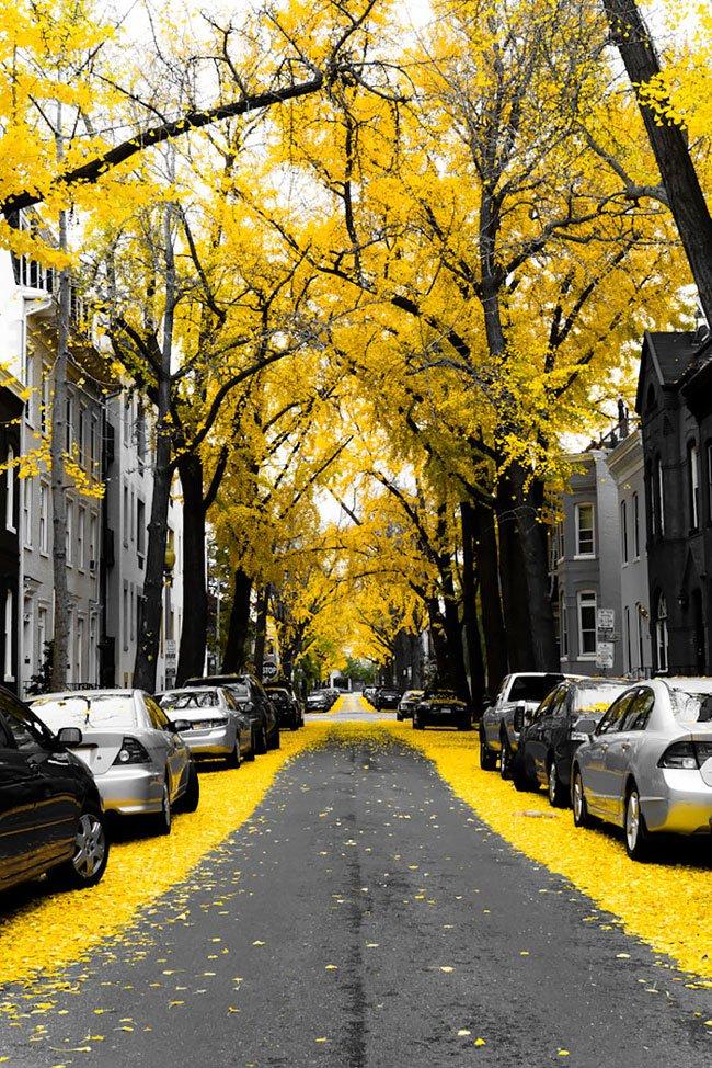 calles-magicas-mundo11