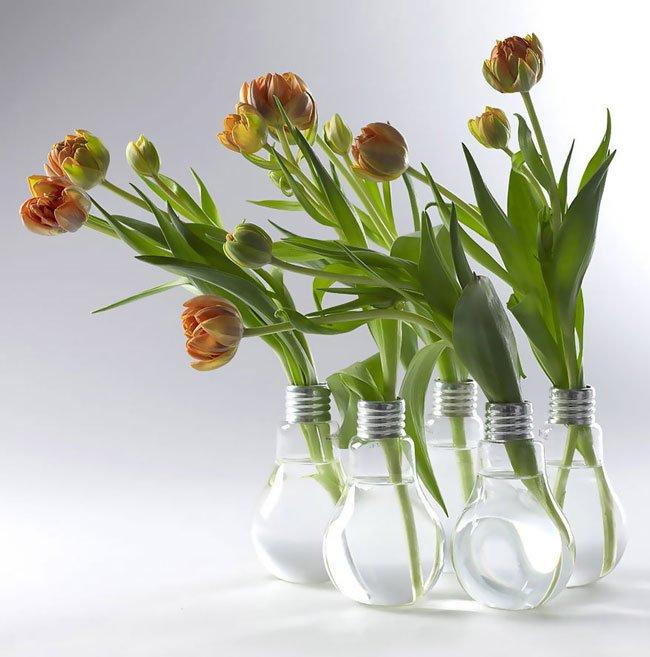 reutilizar-bombillas-viejas16