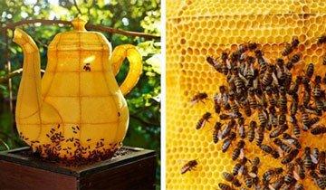 Lo creas o no, esta magnífica tetera gigante ha sido creada por 60.000 abejas. Si, abejas.