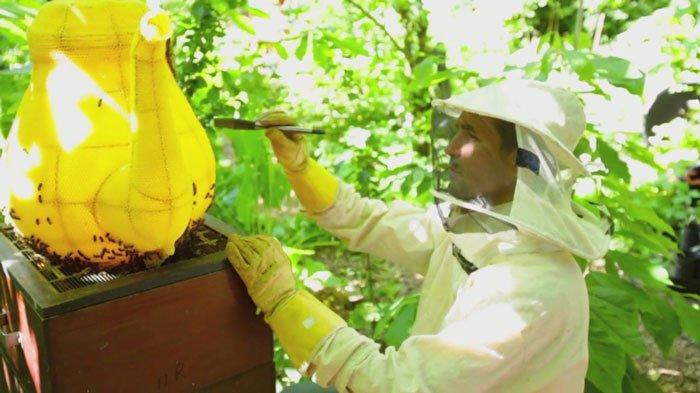abejas-escultura-tetera1
