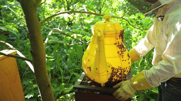abejas-escultura-tetera2