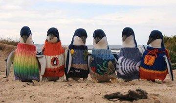 El hombre más mayor de Australia teje suéteres para pingüinos en problemas.