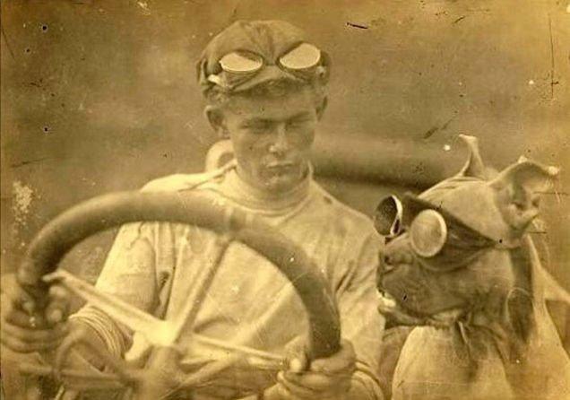 fotos-antiguas-divertidas-mascotas1