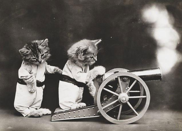 fotos-antiguas-divertidas-mascotas10