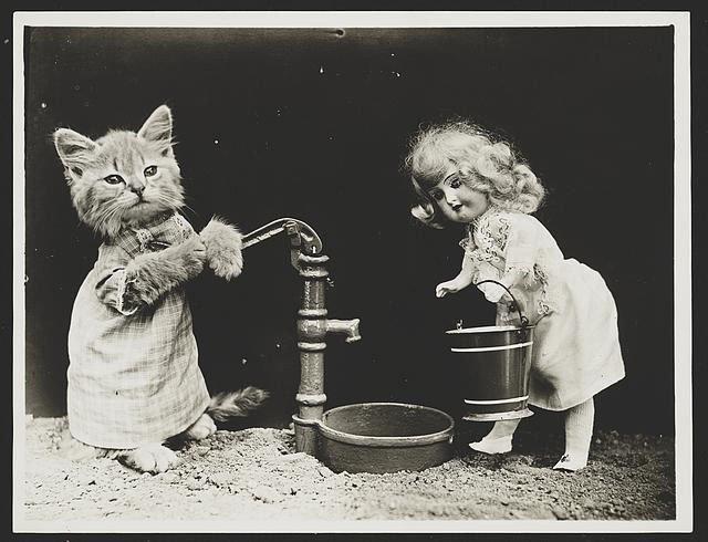 fotos-antiguas-divertidas-mascotas14