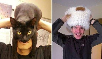 Gatos domésticos como sombreros, la última y calentita tendencia de este frío invierno.