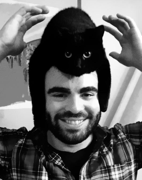 gatos-como-sombreros15