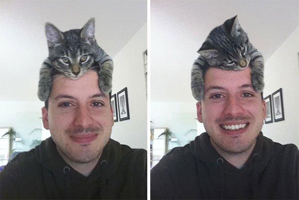 gatos-como-sombreros2