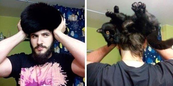 gatos-como-sombreros7