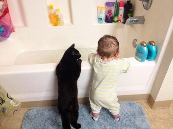 bebes-con-gatos-12