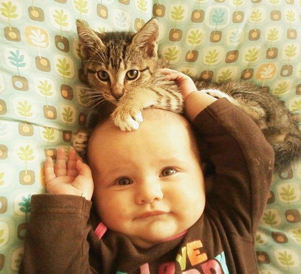 bebes-con-gatos-13