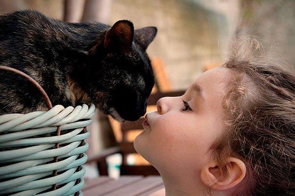 bebes-con-gatos-19