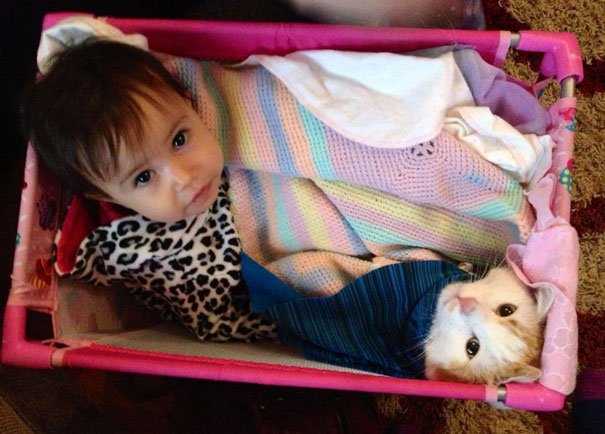 bebes-con-gatos-20