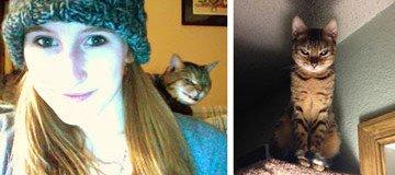 Cómo saber si tu gato está tramando en secreto la idea de acabar contigo.
