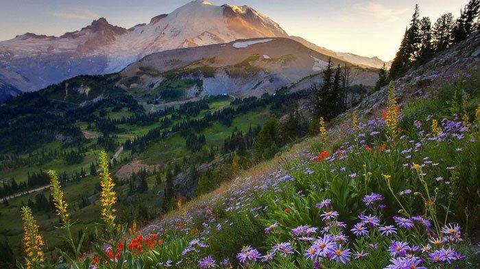 paisajes-coloridos-primavera12