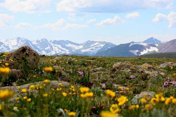 paisajes-coloridos-primavera16
