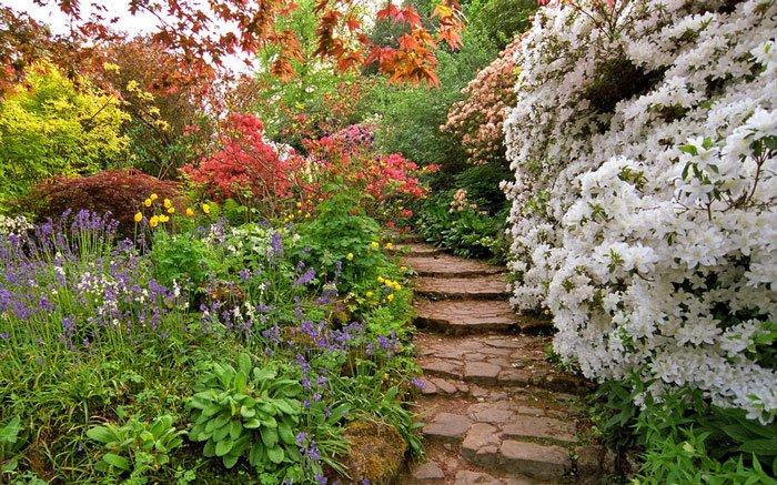 paisajes-coloridos-primavera17
