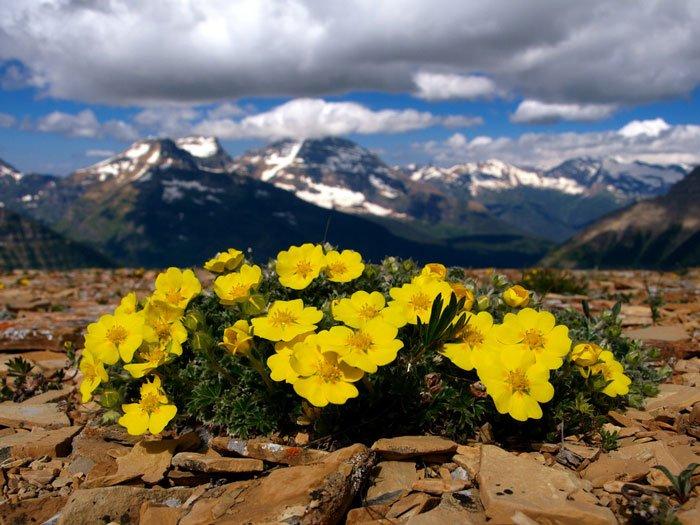 paisajes-coloridos-primavera8